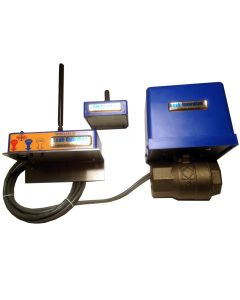 "Petro-meter 2500-100i Leak-Guardian® Complete System 1"" IPS with Wireless Sensor"